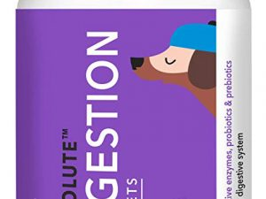 Drools Absolute Digestion Tablets 110pcs